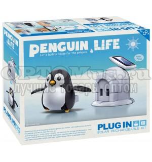 Конструктор на солнечной батарее «ПИНГВИН» Penguin Life Solar Kit оптом